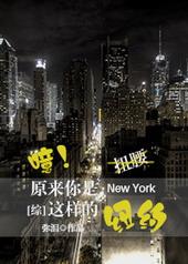 [综]原来你是这样的纽约